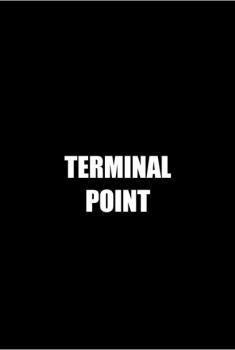 Terminal Point (2015)